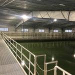 APO-Mill-Creek-Water-Treatment-Plant-WEB